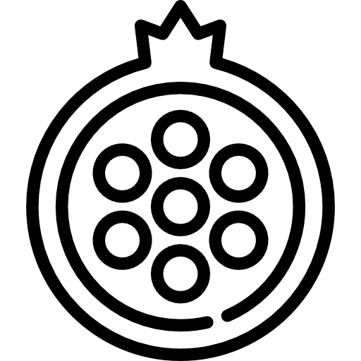 Half Pomegranate Icons Free Download