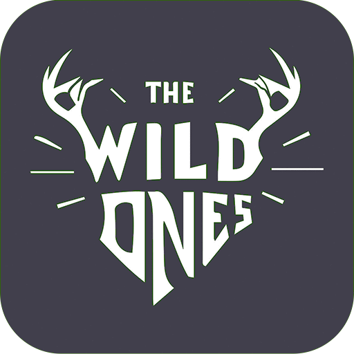 The Wild Ones Hostel Iit Bombay
