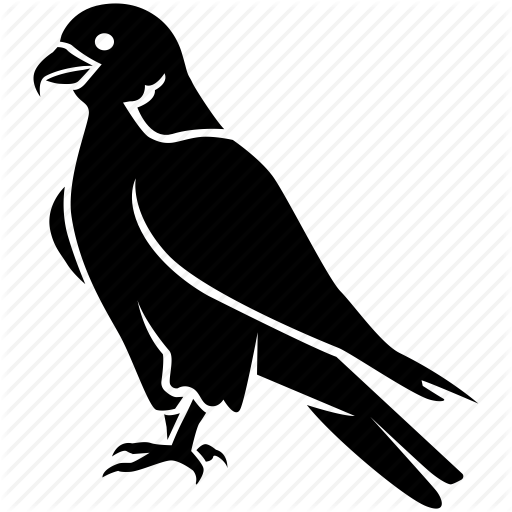 Bird, Duck, Eagle, Falcon, Hawk, Peregrine, Prey Icon