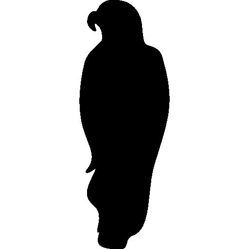 Bird Of Prey Icon