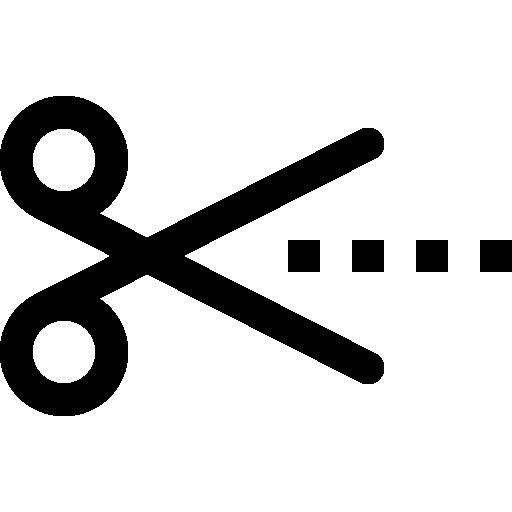 Price Of Icon