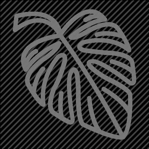 Leaf, Palm, Plant, Rainforest, Tropical Icon