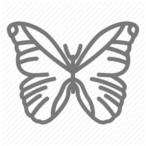Butterfly, Insect, Morpho, Wings Icon