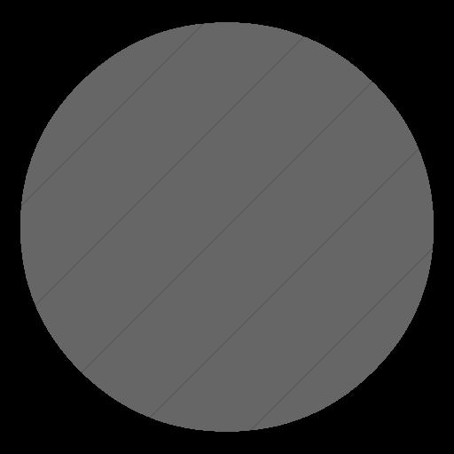 Simple Gray Classica Record Button Icon