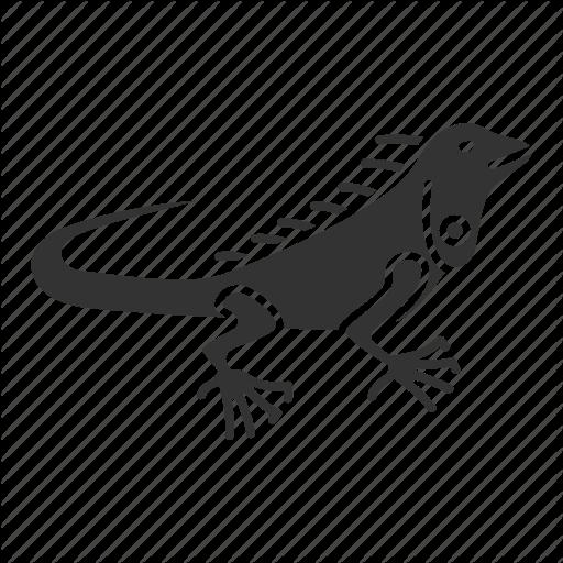 Animal, Herbivorous, Iguana, Lizard, Pet, Reptile, Wildlife Icon