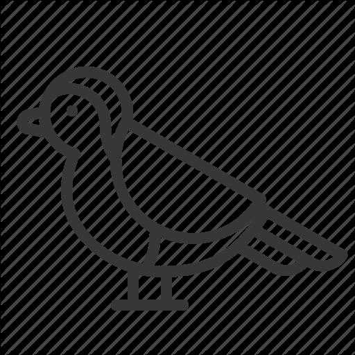 Animal, Bird, Christmas, Robin, Xmas Icon