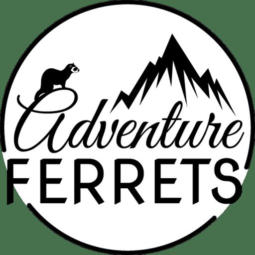 Bye Vancouver! Hello Jucy! Adventure Ferrets