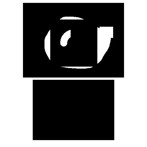 Cinematic Motion Blur