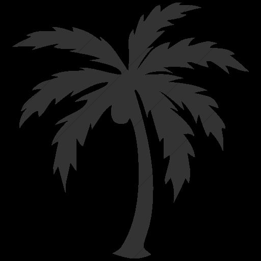 Simple Dark Gray Classica Palm Tree Icon