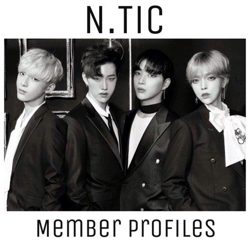 N Tic Member Profiles! K Pop Amino