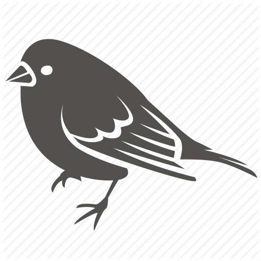 Bird, Canary, Finch, Pet, Small, Sparrow Icon
