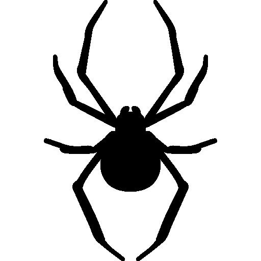 Spider Arthropod Animal Silhouette Icons Free Download