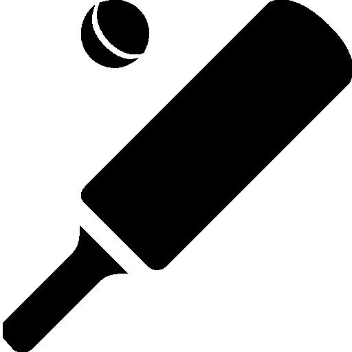 Sports Cricket Icon Windows Iconset