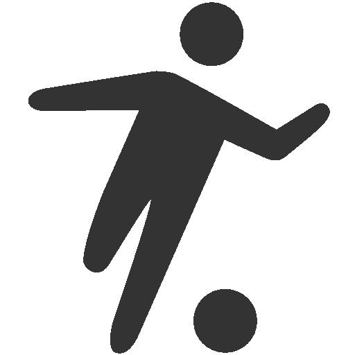Free Sport Icon