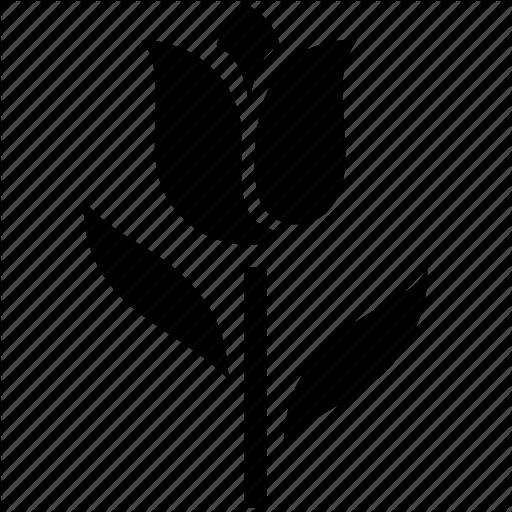 Nature Plant Rose Icon