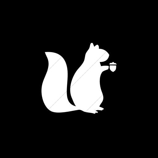 Flat Square White On Black Animals Squirrel Icon