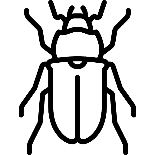 Stag Beetle Icons Free Download