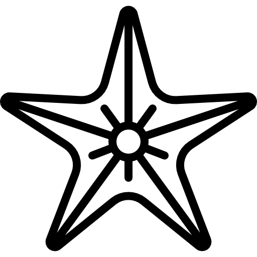 Big Starfish Icons Free Download