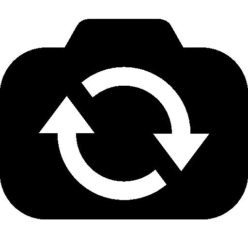 Photo Video Switch Camera Icon Windows Iconset