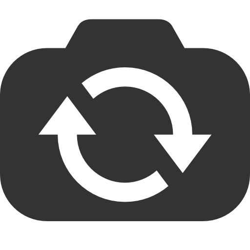 Switch, Camera Icon Free Of Windows Icon