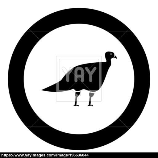 Turkeycock Black Icon In Circle Vector Illustration Vector