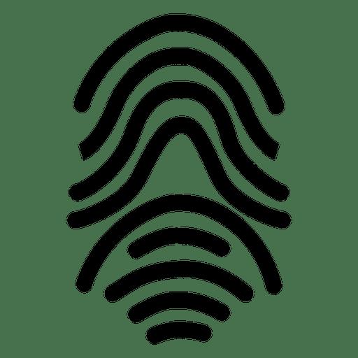 Fingerprint Human Curves