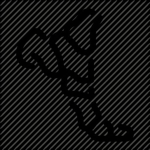 Toe Icon