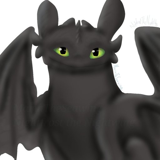 Toothless Icon H T T Y D Amino