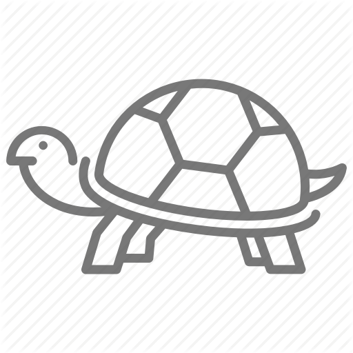 Reptile, Shell, Tortoise, Turtle, Zoo Icon