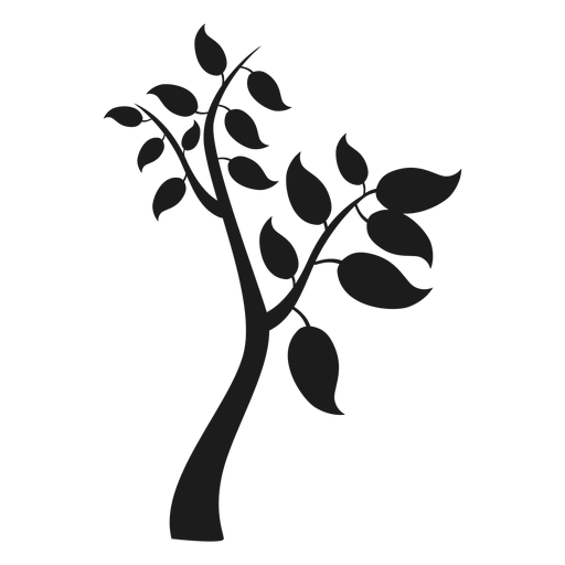 Tree With Branches And Big Leaves Icon