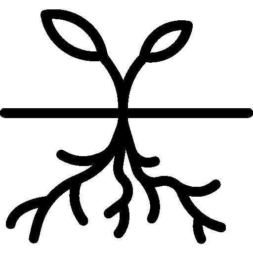 Roots, Tree, Triangular, Trees, Shape, Nature, Triangular Shape Icon