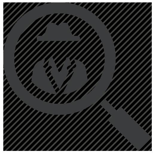 The Investigator Voiceglance