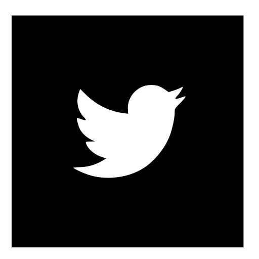 Social Media Twitter Glyph Icon