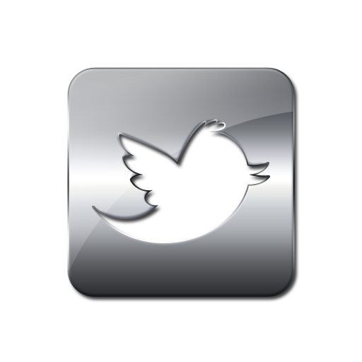 Twitter Bird Square Silver Icon Button Bookkeeping Solutions