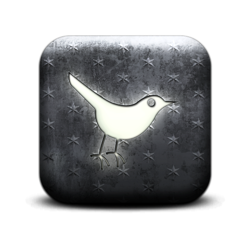 Sn, Social Network, Animal, Twitter, Social, Bird Icon Wood