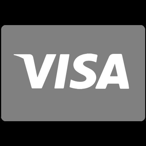 Methods, Payment, Visa Icon