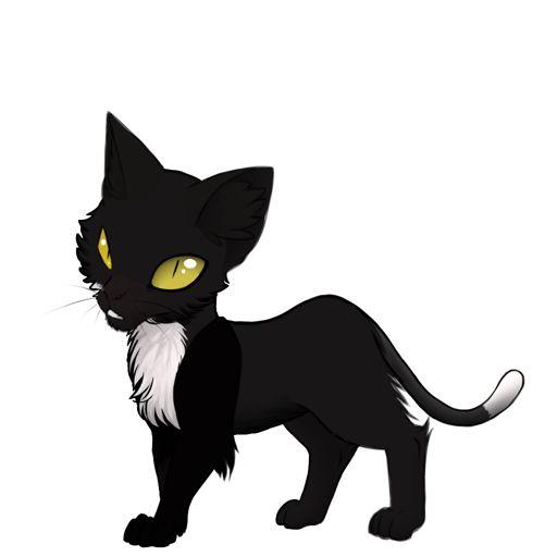 Moonsplash Warrior Cats Warriors Amino