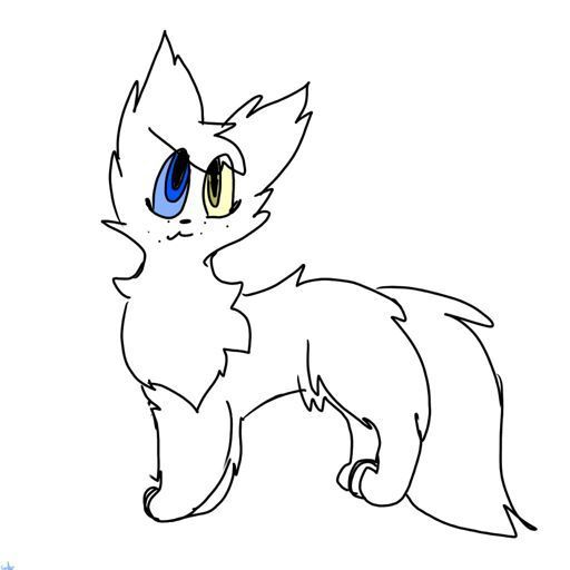 Blizzardclaw Your Warrior Cat Life Amino