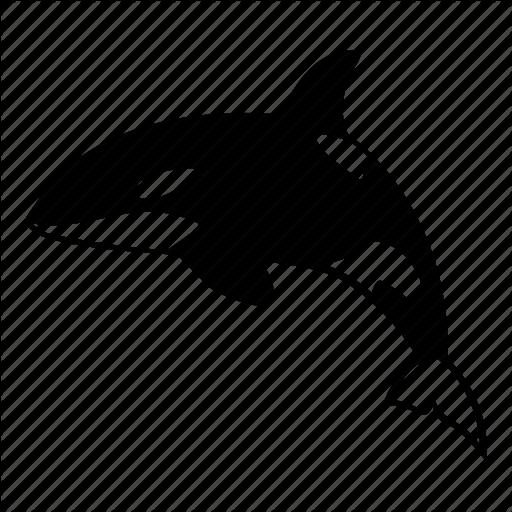 Killer, Mammal, Ocean, Orca, Predator, Sea, Whale Icon