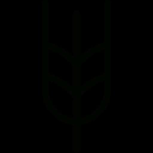 Grains, Wheat Plant, Wheat Icon