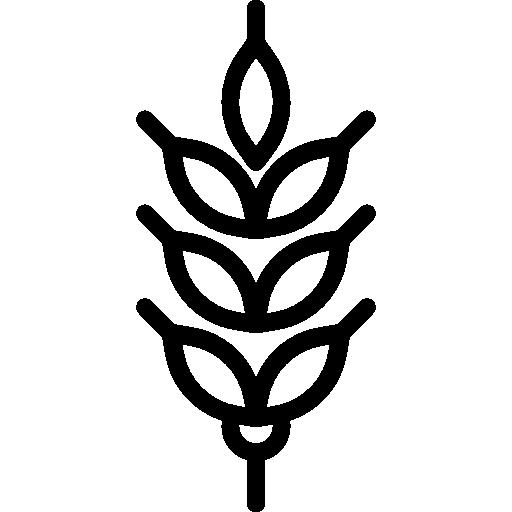 Wheat Icon Farming Set Smashicons