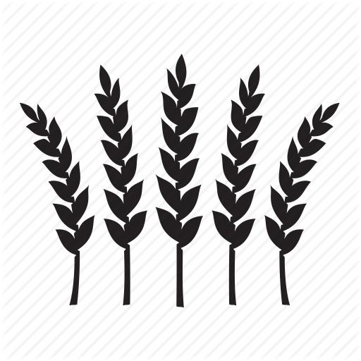 Wheat Icon Png Png Image