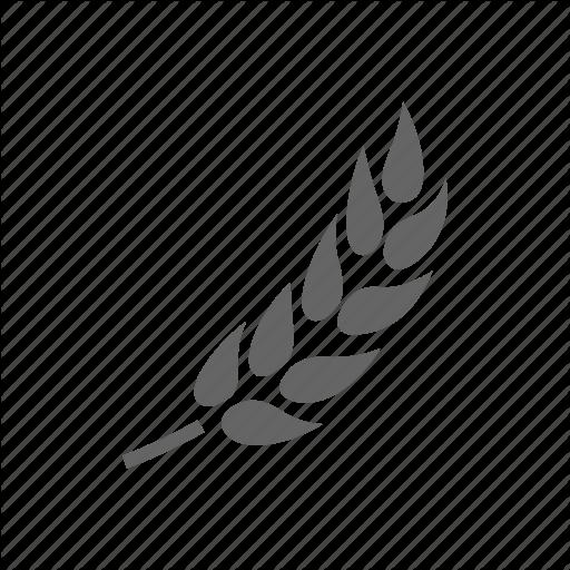 Barley, Wheat Icon