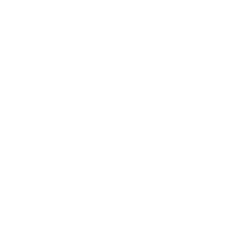 White Google Web Search Icon
