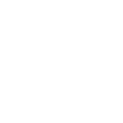 White Settings Icon