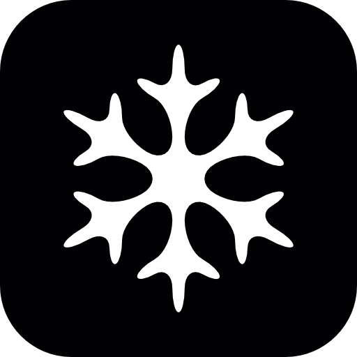Snowflake Winter Shape In Black And White Icons Free Download