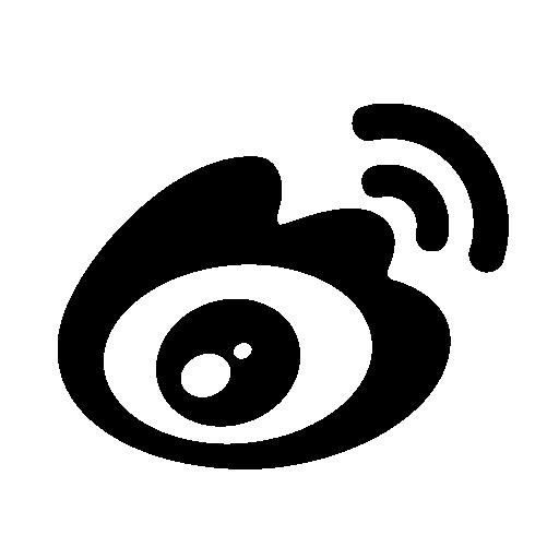 Sina Icon