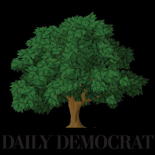 San Francisco Daily Democrat