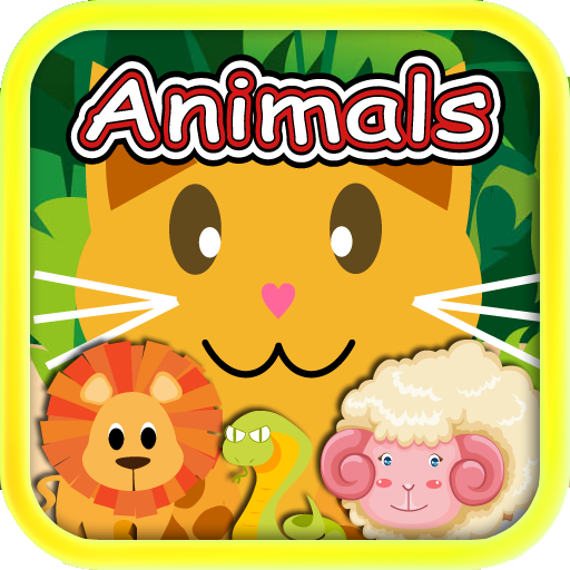 Qcat Preschool In Educational Game For Toddler And Kid