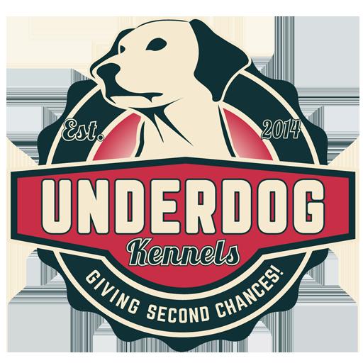 Dog Adoption, Dallas Rescue Dogs For Adoption, Adopt A Dog